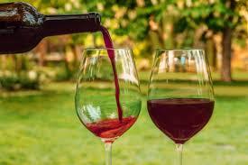 Οινοξένεια: ένα 10ήμερο αφιερωμένο στους οίνους και τη γαστρονομία της  Αιγιαλείας
