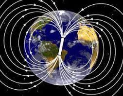 Energía Magnética - Bienestar Vital