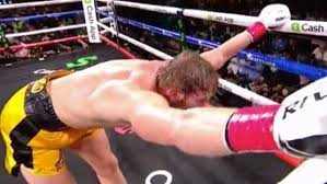Logan Paul vs Floyd Mayweather Fans Freaking Out Over No Official Winner