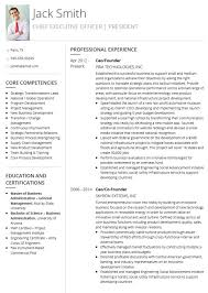 Personal Profile Resume Examples Nice Cv Examples And Live Cv ...