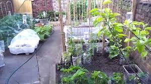 My Kitchen Garden My Kitchen Garden Part 1 Youtube
