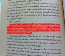 Looking For Alaska Quotes With Page Numbers