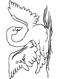 swan coloring pages and print swans birds barbie lake colouring