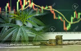 Business Cannabis Leaves Marijuana Stock Exchange Market Or Trading