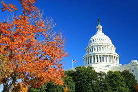 Image result for washington dc autumn
