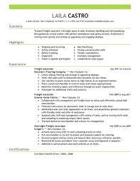 Freight Associate resume example