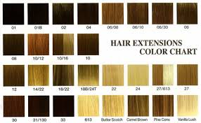 Wig Color Chart Codes Wig Pro Color Chart Best Picture Of Chart Anyimage Org