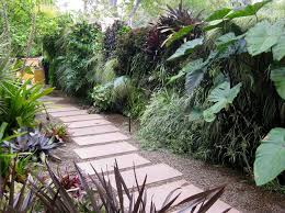 Small Picture Creating A Tropical Garden Inspiration NDA Blog