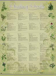 Healing Herbs Chart Herbs Herbalism Healing Herbs