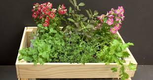 self watering herb planter box