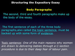 the expository essay 19 structuring the expository essay