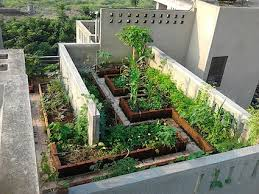 Small Picture Home photo collection A rooftop terrace city farm on a suburban