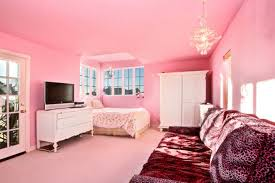 Bedroom Ideas For Teenage Girls Pink Picture