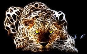 Abstract Tiger 高清晰度电视图片Tiger 图 ...