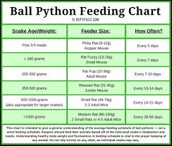 Feeding Chart Kozen Jasonkellyphoto Co