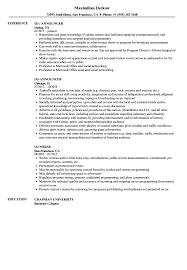 On Air Personality Resume Sample Dj Resume Samples Velvet Jobs 14