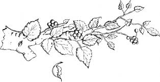 Small Picture Tree Branches Coloring Page