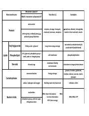 Biological Macromolecules Chart Macromolecules Chart Activitykey Pdf Monomer Subunit