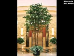 Decorations  Artificial Plants For Home Decor Bangalore Home Decor Trees