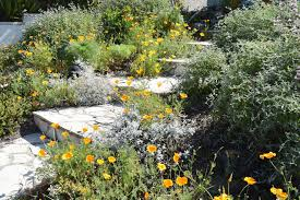 garden size 3 000 square feet front and back started 1995 notable features more than 50 species of native plants surround a 1948 kit house