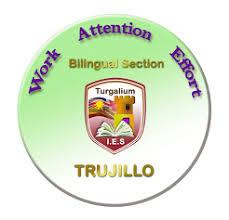 Image result for ies turgalium logo