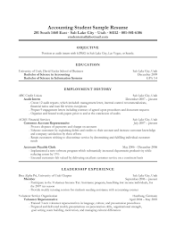 sample resume auditor position cipanewsletter cover letter sample resume objective for accounting position