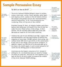 what is a persuasive essay example teaching essay writing high  what is a persuasive essay example opinion article examples for kids persuasive essay writing prompts persuasive