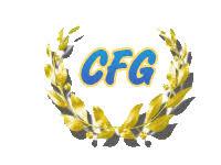 Résultats de recherche d'images pour «CFG EXAMEN»