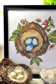 Small Picture Bird Nests Coloring Pages Yahoo Image Search Results coloring