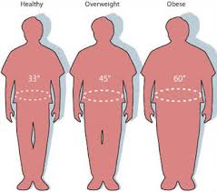 Are You Overweight Obese Or Normal Weight For Your Height