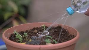 Garten Trick Gießkanne Selbst Gemacht