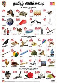 Buy Tamil Alphabet Front Back Educational Wall Charts