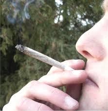 Marihuana Bedava Narkaman Sorgusuna Sekilleri Yazili Resimleri Indir Uygun