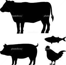 牛豚鶏魚のシルエット イラスト素材 4511519 フォトライブ