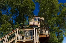alex treehouse masters. PHOTO: Mike Splinter Stands On Stairs Going Up To The Treehouse At His Home In Sacramento Suburb Of Granite Bay, Calif., Dec. 30, 2014. - ABC News Alex Masters