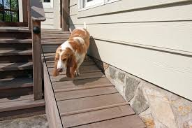 dog ramp for stairs inexpensive dog ramp for stairs dog ramp over stairs diy