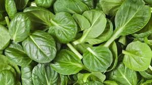 Image result for image of spinach