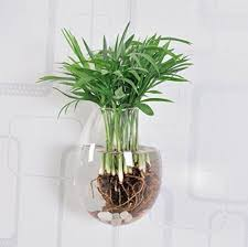 5 packs wall hanging planters glass