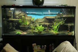 Aquarium Background Pictures Make A 3d Aquarium Background 14 Steps With Pictures