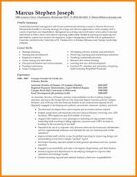 Resume Format For Executive Awesome Sample Executive Summary