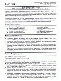See Our Professional Executive Resume Writing Examples Intended For