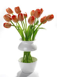 Adorable Decorating Design Ideas Using Unusual Flower Vase : Divine Dining  Room Decoration With Red Tulip