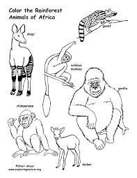 Rainforest Animals Coloring Pages Pdf Jungle Animal Coloring Pages