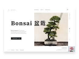 Bonsai Web Design Bonsai Conceptual Web Design By Pollen Chakma On Dribbble
