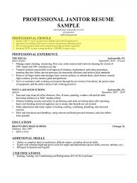 Professional Profile Resume Simple Laborer Professional Profile Resume Templates Archaicawful Genius