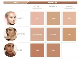 Indian Skin Complexion Chart How To Find Your Shade Nude By Nature Au