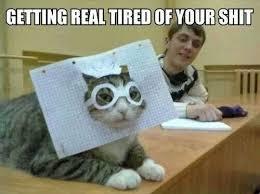 "Sick & tired.. LoL! #Cat #Meme | I am that ""Crazy Cat Lady!"" LoL ... via Relatably.com"