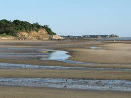 Tide Chart Cape Cod Wellfleet The Beach At Low Tide Picture Of Indian Neck Beach
