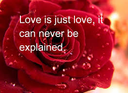Image result for valentines images