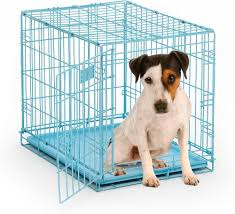Light Blue Dog Crate Midwest Icrate Single Door Blue Dog Crate